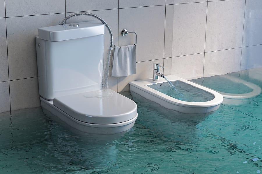 toilet overflow servicces